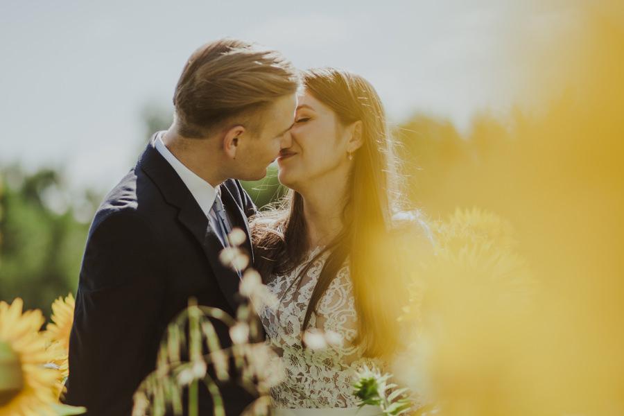 plener ślubny słoneczniki