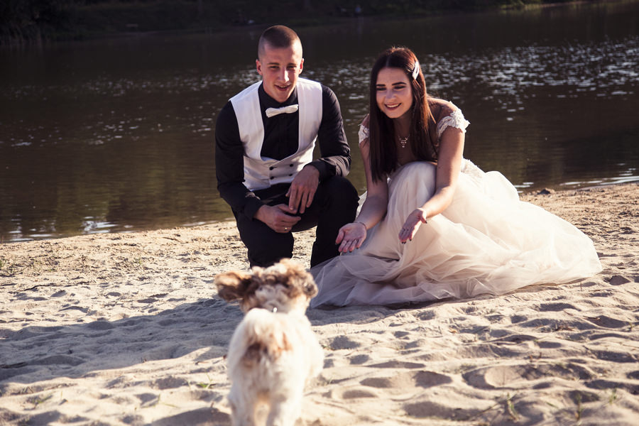 sesja ślubna z psem